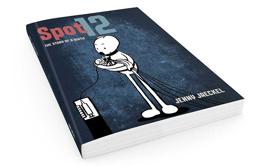 Spot 12 redesigned book cover